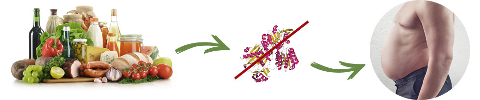 Garcinia Slim - ingredienti - composizione - funziona - come si usa?