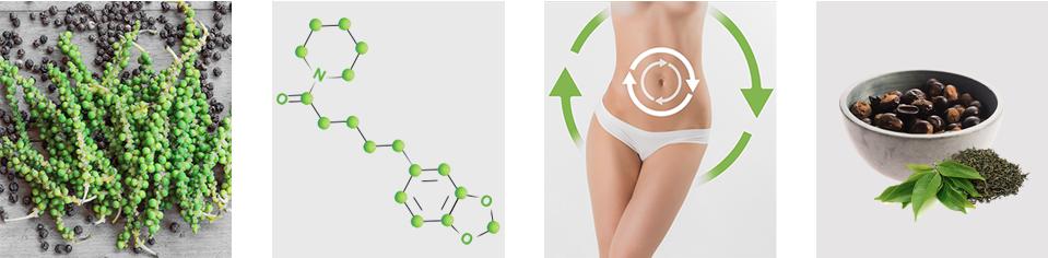 Piperine Slim - ingredienti - composizione - funziona - come si usa?
