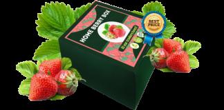 Home Berry Box - opinioni - Italia - dove si compra? - sito ufficiale - prezzo - funziona