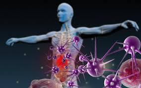 Immune Defence - effetti collaterali - controindicazioni