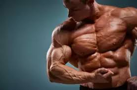 Muscle Formula - funziona - come si usa? - ingredienti - composizione
